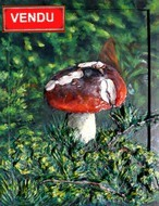 http://virginie-trabaud.com/tableau-peinture-champignon-rouge-mousse-foret-virginie-trabaud/tableau-peinture-champignon-rouge-mousse-foret-virginie-trabaud_small.jpg