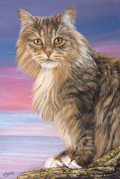 Peinture Chat Maine Coon assis Ubala - acrylique et sculpture au mortier en relief 3D - virginie Trabaud